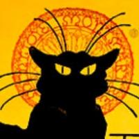 blackcat